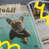 『地域情報誌BonNo(ボンノ)9月号に看板犬アグー発見!』の画像