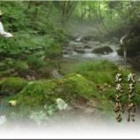 『我子と共に岩魚と戯る』の画像