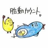 『🐥胎動カウント🐥』の画像