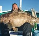 148センチの大物クエ釣る 重さ40キロ、鍋料理なら100人前