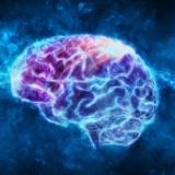 電脳化することで「デジタル上で人間は生き続けられる」と主張するマインドエミュレーション財団が登場