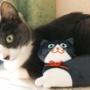 猫が喜ぶカルディのペンケースの使い方