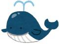 【悲報】クジラックスさん、ニュースで報道されてしまう…