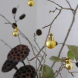 『天然木で作るシンプルなクリスマス飾り & 蓮のドライフラワー』の画像