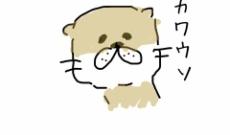 【乃木坂46】井上小百合「かわいいウソをつきたかったのですが、一晩中考えて全く思い浮かばなかったのでカワウソを描きました。」