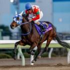 『【大井・東京2歳優駿牝馬結果】ケラススヴィアが無傷の4連勝で重賞2勝目!』の画像