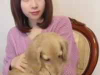 【欅坂46】織田奈那「私は11番目に可愛い、12番目は長沢菜々香」 ゆうパラにて