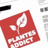 『パリで流行りの植物セール』の画像