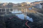 人気番組「池の水ぜんぶ抜く大作戦」で交野市倉治の蓮池が登場!〜前日にはもう半分以上水はなくなり準備進行中〜