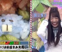 【日向坂46】美穂のお弁当、前歯が!?