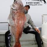 『6月10日 釣果 スーパーライトジギング 80センチの大鯛筆頭に5匹!!』の画像