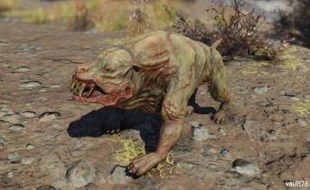 ミュータントハウンド(Mutant hound)