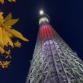 2012年5月22日、東京スカイツリーの開業日