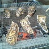 『カキ☆牡蠣ツアー』の画像