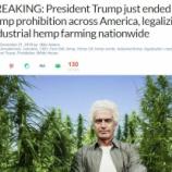 『米国が商業用大麻全面解禁へ』の画像