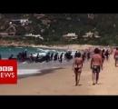 【動画】スペインのビーチにアフリカ移民を乗せたボートが突じょ漂着、もの凄い勢いで上陸 居合わせた海水浴客ら騒然