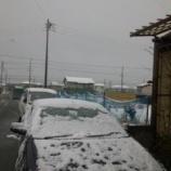 『雪!!!』の画像