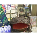 『(栃木)那須烏山市の山あげ祭り』の画像