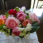『【ピノ子日記】バラに励まされて・・・』の画像