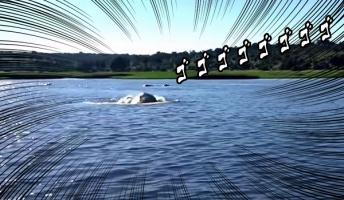 これはヤバイ!水中から猛スピードで襲い来るモンスター!その正体、実は・・・