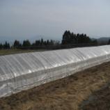 『米作り始まってますが・・・寒い!』の画像