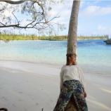 『【乃木坂46】映え…てる…????? 北野日奈子、木と一体化・・・』の画像