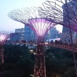 『スカイウェイから夜景を楽しむには早めに並ぶのがベスト!ガーデン・バイ・ザ・ベイ』の画像