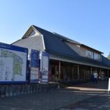 『昭和記念公園の紅葉』の画像