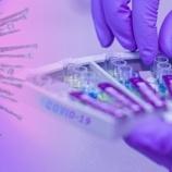 『じいちゃん、PCR検査ってなあに?』の画像