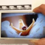 『2ヵ月で完売した「タニマダイバー」の第二弾発売記念 「タニマダイバー公式写真集 ふくらみの引力」に AR動画アプリ「marcs(マークス)」が採用』の画像