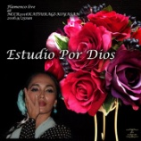 『Flamenco Live at TOYO TIRES NCCR2016KATSURAGI-KOUYASAN』の画像