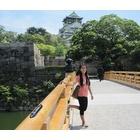 『次回の日本ツアーを考え中です』の画像