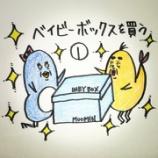『🐢ベイビーボックスを買う①🐢』の画像