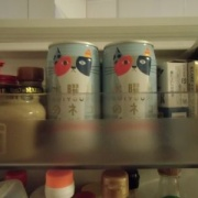冷蔵庫にネコを2匹飼ってます!