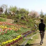 『ハイジの村』の画像