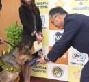 【お手柄】行方不明の70代女性 スリッパの臭いをもとに捜索、30分で発見 警察犬・アーバン号(3歳)を表彰 おもちゃ贈呈 埼玉・越谷