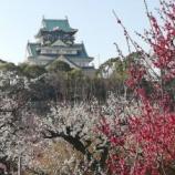 『大阪城梅園に行ってまいりました。』の画像