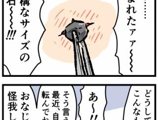 顔から出た異物②