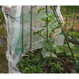 『2014年台風18号通過中。今日も、畑の台風対策で、日が暮れた。→ 風害で、畑はむちゃくちゃ。』の画像