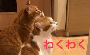 Happy end のその後・・・☆