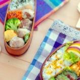 『蒸すより早い・手軽・お弁当向き。手作り焼きシューマイの息子弁当』の画像