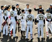 【阪神】2軍も熱い 若手に負けじと奮起する「働き盛り」の選手たち