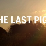 『ラストピッグ最後の豚』の画像