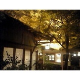 『京の灯』の画像