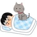 猫って犬と違って従順じゃないのがいいよな