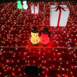 『クリスマスイルミネーション🎄☆彡『時空を結ぶ光のギフト』~大阪駅 OSAKA STATION CITY 時空の広場~』の画像