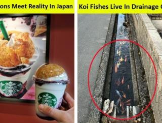 外国人「日本ってね他の国とは違うんだよ。これ、証拠な」