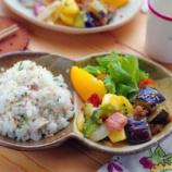 『焼き塩サバご飯とゴーヤ入りジャーマンポテト風の炒め物』の画像