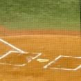 【妄想】もしも野球が10人でやるルールだったら、追加する守備どこ????
