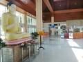 中国がスリランカに建てた「世界一寂しい国際空港」をごらんください 乗客は1日平均10人以下 (画像あり)